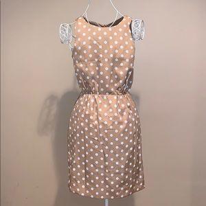 J. Crew Polka Dot Dress 0